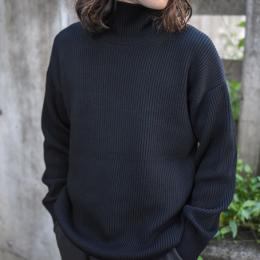 AURALEE / Super Fine Wool Rib Knit Turtle Neck P/O (Black)